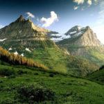 Curiosidades Edelweiss – El Scout ama y protege la naturaleza